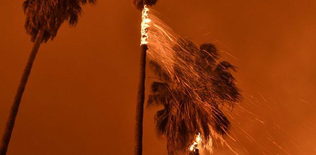 cropped-1205_nws_ldn_ventura-fire-1205-50211.jpg